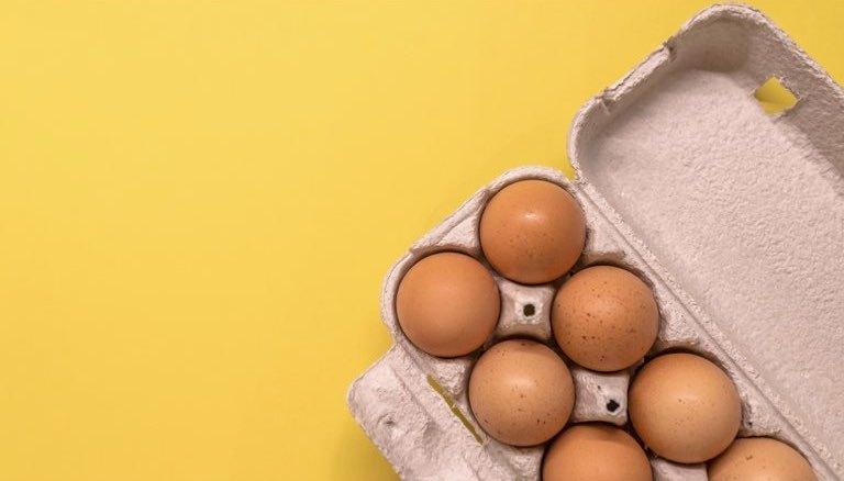 卵殻膜を活用するバイオベンチャー「アルマード」が新規上場へ