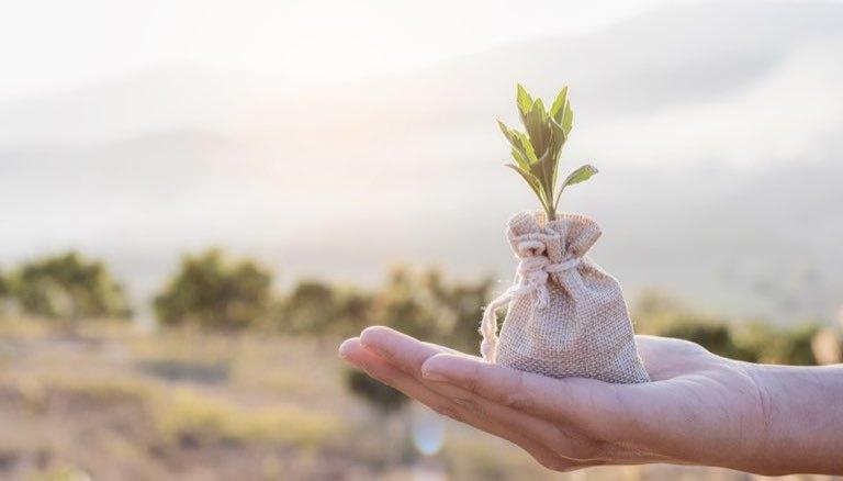 各事業堅調で+71%増収の「マネーフォワード」唯一の懸念は中小企業の倒産か